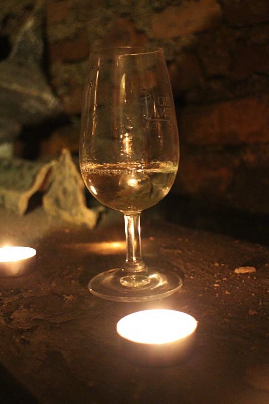Vínna cesta v Trnave