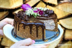 Gaštanový cheesecake s čokoládou